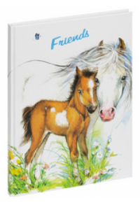 Pagna Freundebuch Fohlen